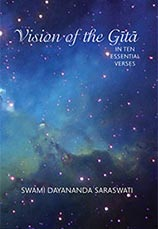 Vision of the Gita